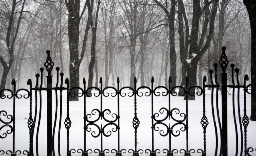 wroughtiron fence on the background of snowcovered park
